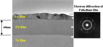 TEM analysis results of ENEPIG film